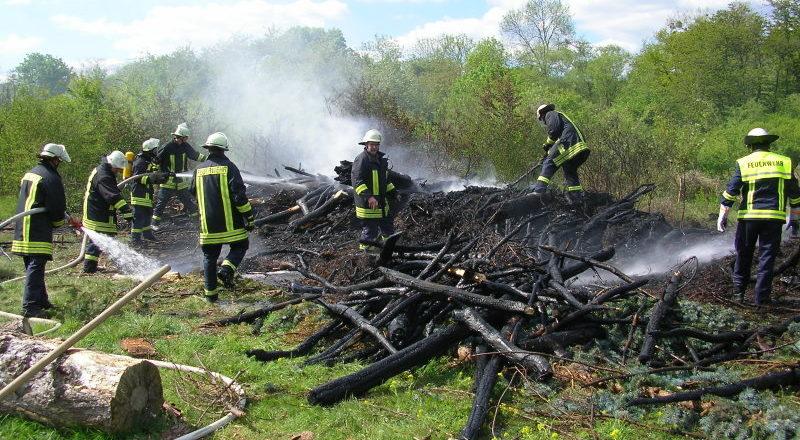 Brand von mehreren Baumstämmen