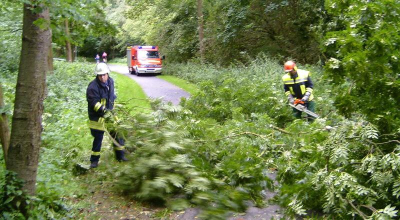 Feuerwehr beseitigte den Baum