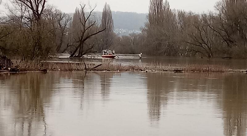 07.02.2021 - Tierrettung Rhein